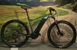 Giant Talon 29'er E+ 1 L 2021